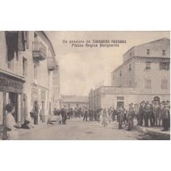 TERRANOVA PAUSANIA - PIAZZA REGINA MARGHERITA, CARTOLINA VIAGGIATA 1920